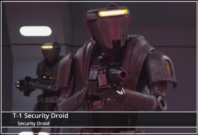 This image has an empty alt attribute; its file name is T1SecurityDroid_FA.png